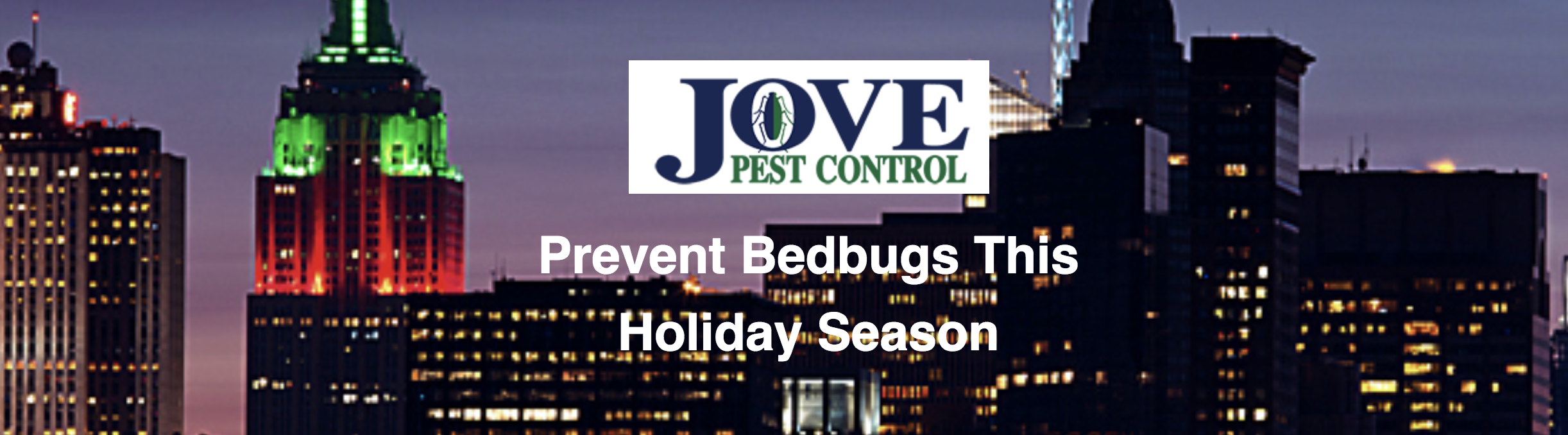 4 Tips To Prevent Bedbugs This Holiday Season